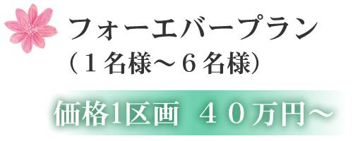 フォーエバープラン (1名様~6名様) 価格1区画 40万円~
