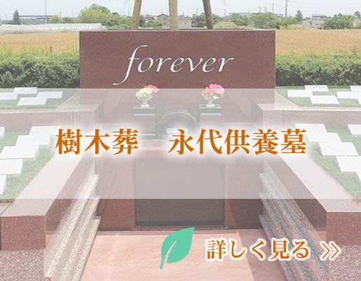 樹木葬 永代供養墓