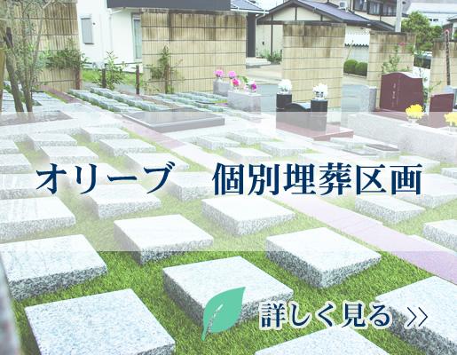オリーブ 個別埋葬区画