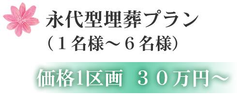 永代型埋葬プラン (1名様~6名様) 価格1区画 30万円~