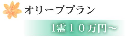 オリーブプラン 1霊10万円~