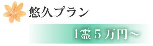 悠久プラン 1霊5万円~